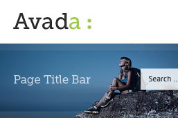 Avada Page Title Bar